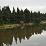 beliansky_rybnik_3-1024x680